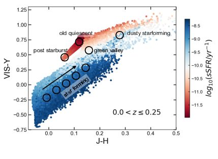 Euclid: The selection of quiescent and star-forming galaxies using observed colours