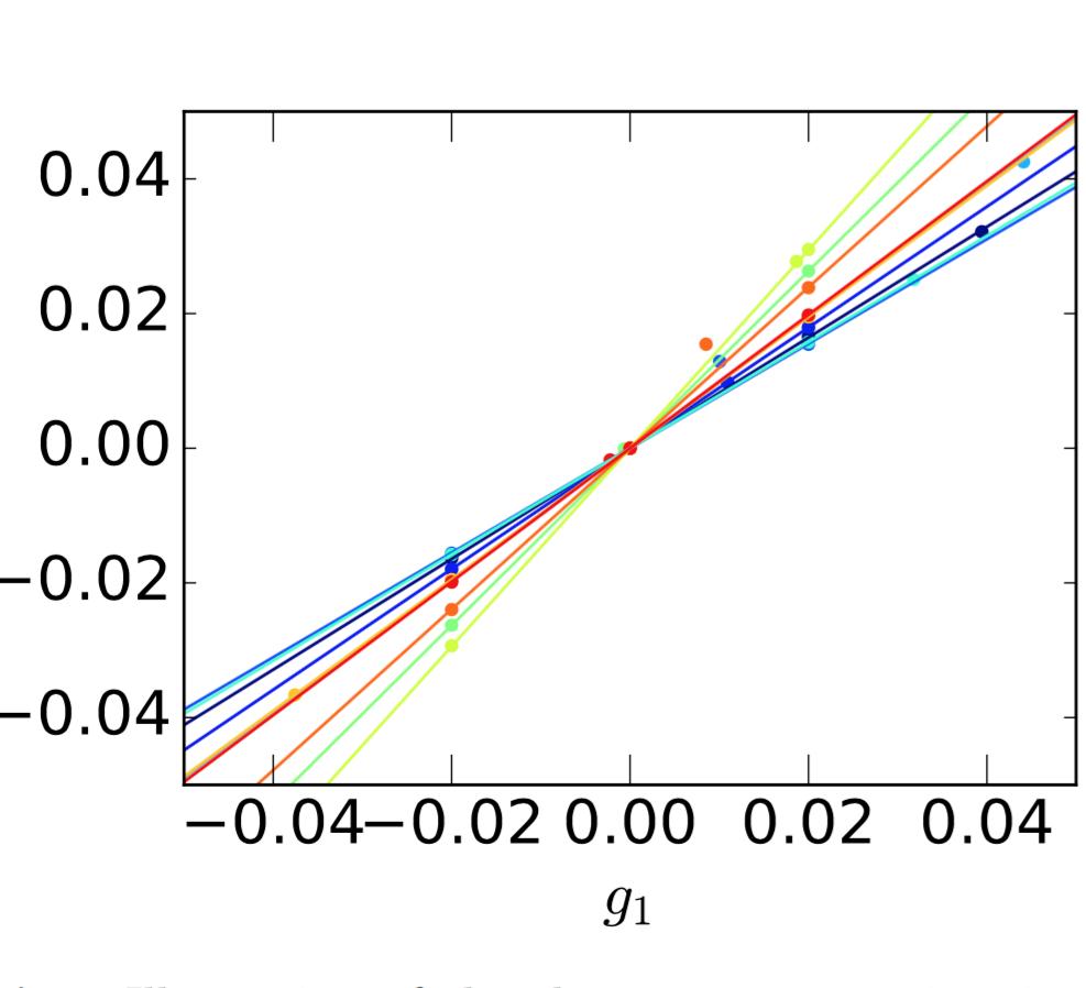 A highly precise shape-noise-free shear bias estimator